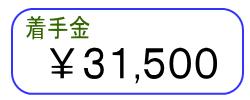 着手金 \0~31500